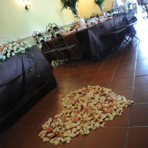 Weddings & Conferences